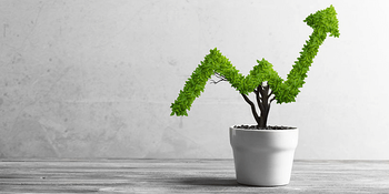 growing your business takes careful planning - plant